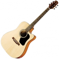 Guitare Walden - Euroguitar